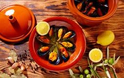 Ångade musslor Spanien för Tapasmejillonesal dunst Royaltyfri Foto