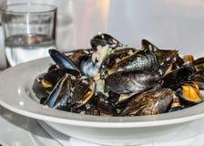 Ångade musslor tjänade som i den vita plattan med ett exponeringsglas av vatten Arkivfoto