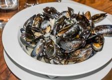 Ångade musslor tjänade som i den vita plattan med ett exponeringsglas av vatten på w Royaltyfri Bild
