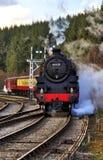 Ångalokomotiv och drev, North Yorkshire järnväg royaltyfria bilder