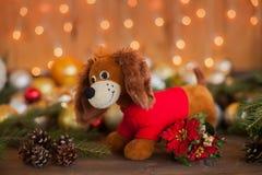 År av hunden på horoskopet, julpynt Fotografering för Bildbyråer