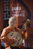 År av ormen 2013 Royaltyfri Bild