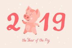 2019 år av SVINET Arkivfoton
