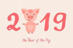2019 år av SVINET Arkivbilder