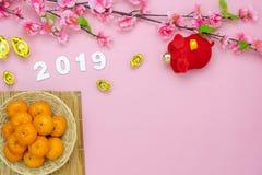 År för bästa sikt för tabell mån- nytt & kinesiskt nytt år 2019 arkivbild