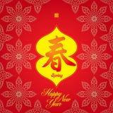 år för fjäder för kinesisk festival för kort nytt Royaltyfri Fotografi