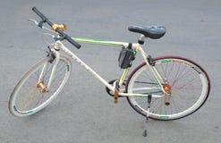 År för transportasi för skälmskt naturväxenbikecyclesportar nytt royaltyfria bilder