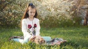 6-7-år-gammal flicka dalta en liten kanin som sitter på den gröna gräsmattan i trädgården stock video