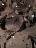 6000 år gammal vinodling Royaltyfri Fotografi