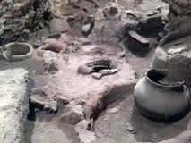 6000 år gammal vinodling Arkivbild