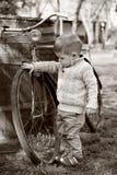 2 år gammalt nyfiket behandla som ett barn pojken som går runt om olen arkivfoton