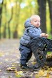 Årig en behandla som ett barn pojken i höst parkerar Royaltyfria Bilder