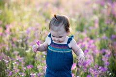 Årig flicka för unge i ett purpurfärgat blommafält Arkivbilder