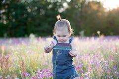 Årig flicka för unge i ett purpurfärgat blommafält Arkivfoto