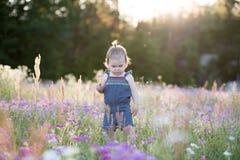 Årig flicka för unge i ett purpurfärgat blommafält Arkivfoton