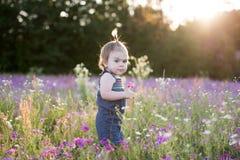Årig flicka för unge i ett purpurfärgat blommafält Royaltyfri Bild