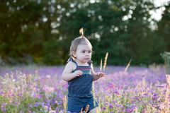 Årig flicka för unge i ett purpurfärgat blommafält Royaltyfri Foto