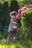 Årig flicka som tre spelar med den gulliga hunden i trädgården Arkivfoto