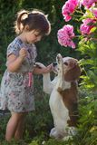 Årig flicka som tre spelar med den gulliga hunden i trädgården Royaltyfri Bild