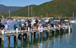Årlig Picton barns konkurrens för fiske, Nya Zeeland Royaltyfri Fotografi