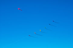 2008 årliga gyckel för frenesi för april ståndsmässiga flygfrederick som har drakedrakar, parkerar folk sjunde sherandoen tagna v Royaltyfri Bild