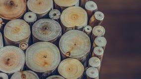 Årliga Ring Tree Timber Pile royaltyfria bilder