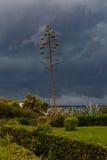 Åskmoln i himlen över havet Fotografering för Bildbyråer