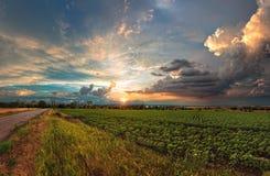 Åskmoln och solnedgångsommartiden arkivbild