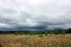 Åskmoln, skog och fält, naturligt landskap Royaltyfri Fotografi