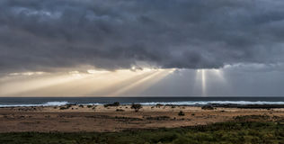 Åskväderrullning in över Atlanticet Ocean Royaltyfria Bilder