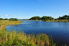 The Ã…snen-See, Swedens new Nationalpark. The Ã…snen-See, Swedens new Nationalpark in aun stock photos