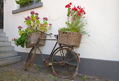 Återanvänd bycycle med korgar av blommor Royaltyfria Foton