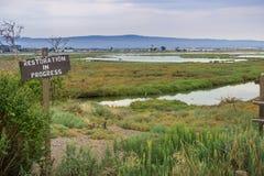 Återställande undertecknar in våtmarkerna i Alviso träsk Fotografering för Bildbyråer