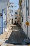 Återvändsgrändgränden med den branta gatan, rena trottoarer och målade utmärkt hus i San Francisco royaltyfri fotografi