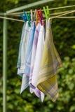 Återvinningsbara 100 procent bomullsnäsdukar Royaltyfria Foton