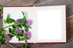 Åtlöje upp Öppna sidor av albumet och blomstra växt av släktet Trifolium Royaltyfri Fotografi