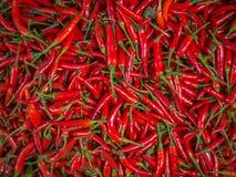 Åtskillig röd kryddig pepparbakgrund Arkivbilder