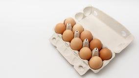 Åtskilliga ägg i kartong på en vit bakgrund Royaltyfria Bilder