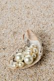 Åtskilliga pärlor i ostronhavet beskjuter på sand Arkivbilder
