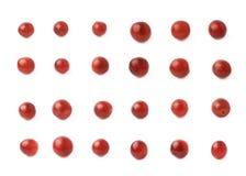 Åtskilligt mörker - isolerade röda druvor arkivbilder