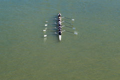 Åtta män som ror på Danube River Royaltyfri Foto