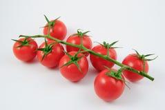Åtta vinrankatomater (Solanumlycopersicumen) Fotografering för Bildbyråer