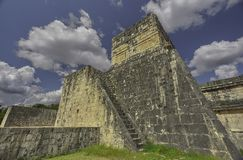 捷豹汽车的寺庙的边后方看法 图库摄影