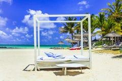 松弛热带假日 白色沙滩响铃母马在毛里求斯海岛 库存照片