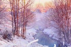 森林小河在冬天森林里 库存图片
