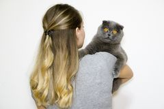 模型是回到照相机并且拿着在他的胳膊的猫在右边 库存图片