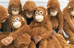 橙色猴子软的玩具在玩具店的柜台的 免版税库存照片