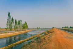 水管理看法在米领域的从在种植前的灌溉运河 免版税库存图片