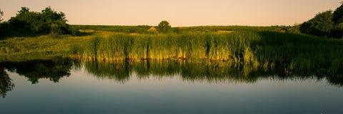 河和领域与绿色灌木丛林在春天在干草原在日落 库存图片