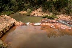 流动在小河下的水在巴西的Savannas 免版税库存图片